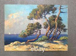 Beautiful Landscape Painting 1950 Sea Pine Oil On Panel Hsp Signed To Be Identified