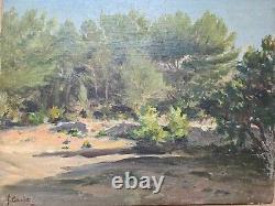 Francois Gautier (1842-1917) La Pinède En Provence Impressionism