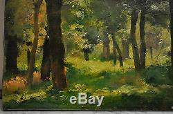 Louis Adolphe Tessier (1858-1915) - Oil On Canvas -light In The Woods
