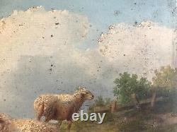 Oil On Panel Wood School Flemish Sheep Poule Auguste Coomans 1855-1896