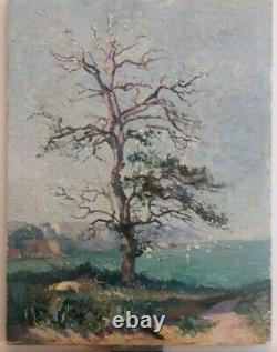 Old Oil On Wood, Tree, Landscape, Seafront