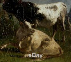 Antonio Cordero Cortès 1827-1908. Beau Barbizon & Vache & Taureau Dans Un Pré
