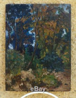 Bel Impressionniste 1900. Puissant Paysage De Forêt. Cachet Lucien Adrion