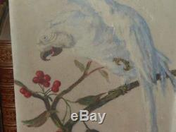HUILE SUR BOIS Signée ANDRE JALLOT / PERROQUET SUR UN CERISIER Art Déco Ca 1930