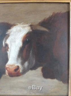 Hsp huile sur panneau 19ème 2 têtes de vaches signé Rosa Bonheur