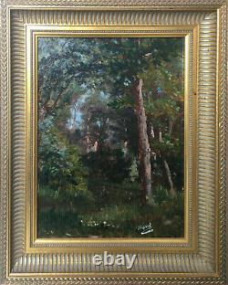 Tableau HST/P Paysage de sous bois, Forêt XIX° signé Dupont avec cadre