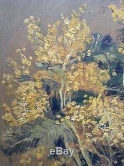 Tableau ancien Bouquet de Mimosas Huile sur bois